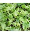 Mezcla oriental picante - semillas no tratadas
