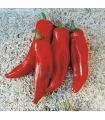 red bull horn pepper - untrated seeds
